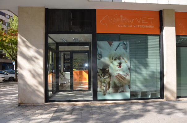 CLINICA VETERINARIA H (2)